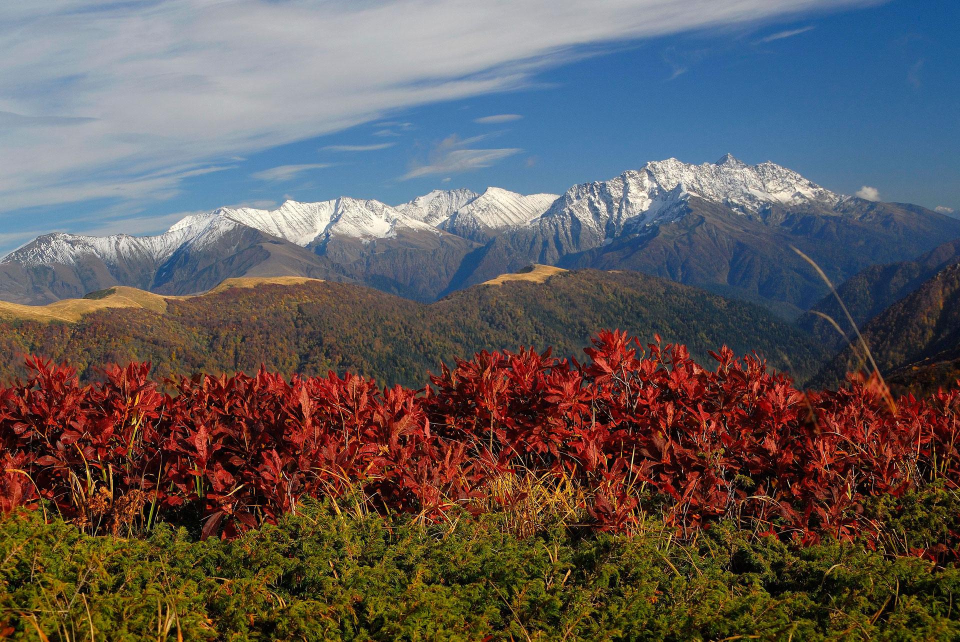 Узнайте обо всех путешествиях по Кавказу от туроператора ЭЛЬГАС!